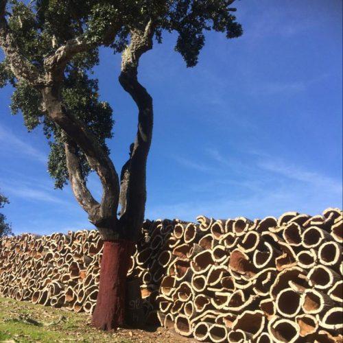 corkfactory Algarve